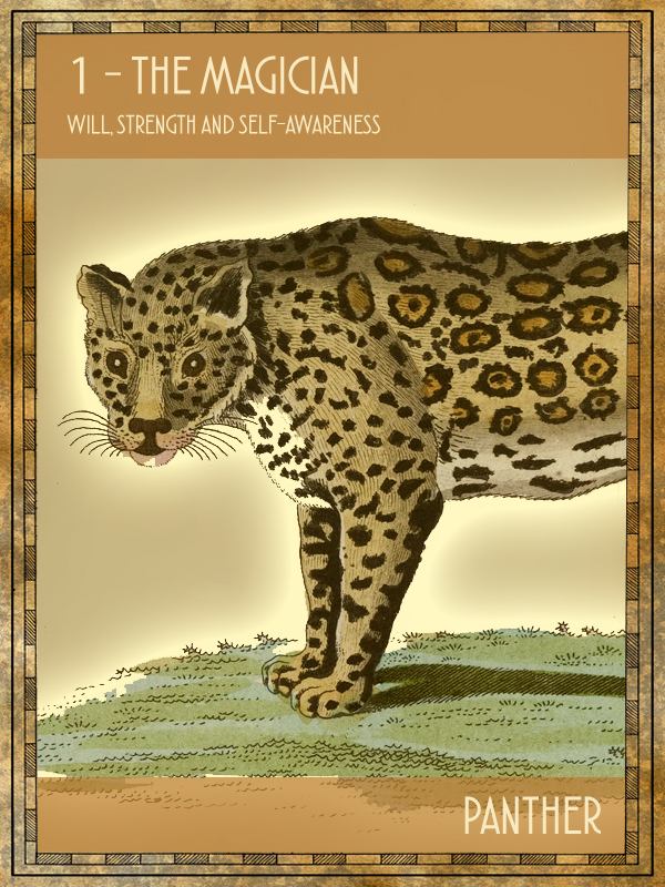 Animal Tarot Panther