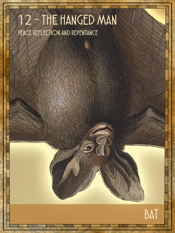 Animal Tarot Bat