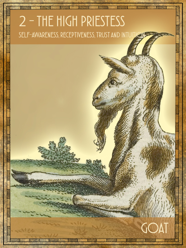 Animal Tarot Goat