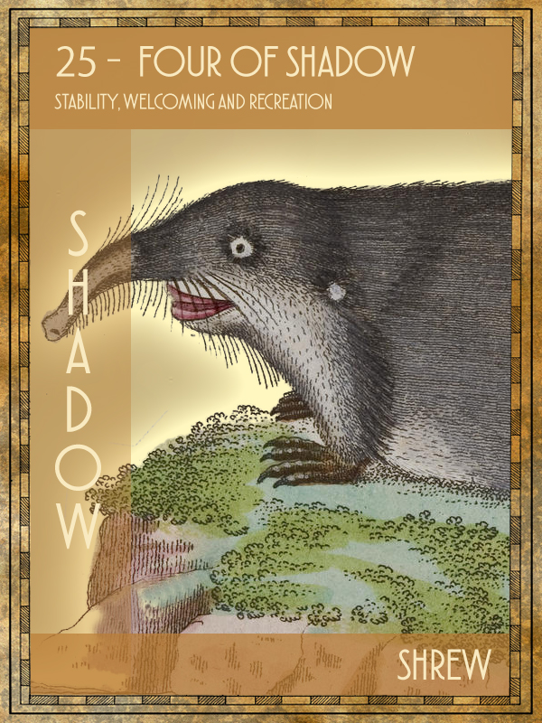 Animal Tarot Shrew