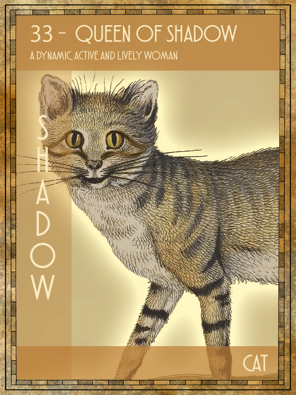 Animal Tarot Cat