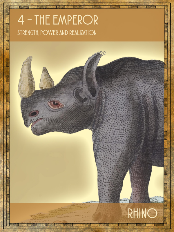 Animal Tarot Rhino
