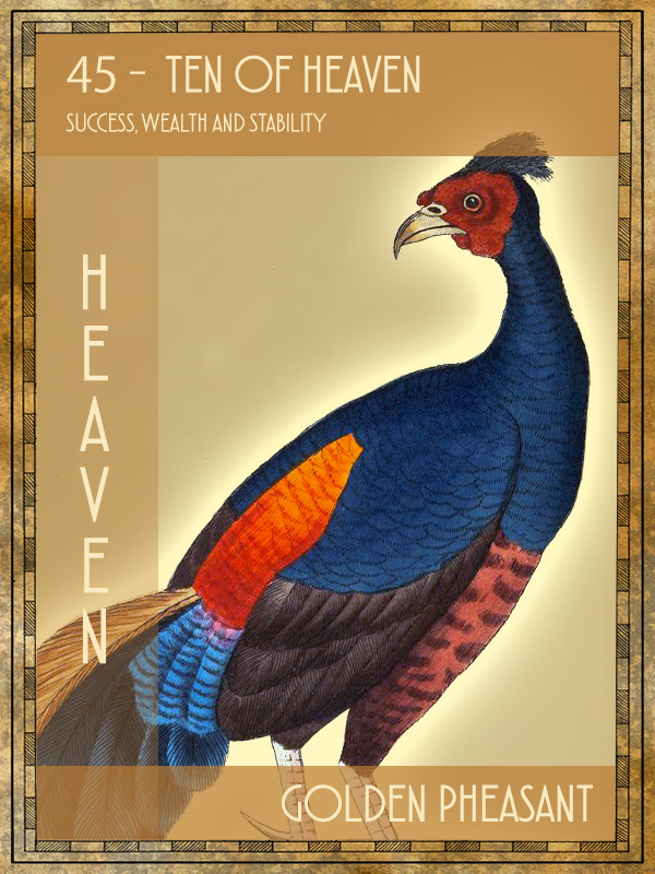 Animal Tarot Golden Pheasant
