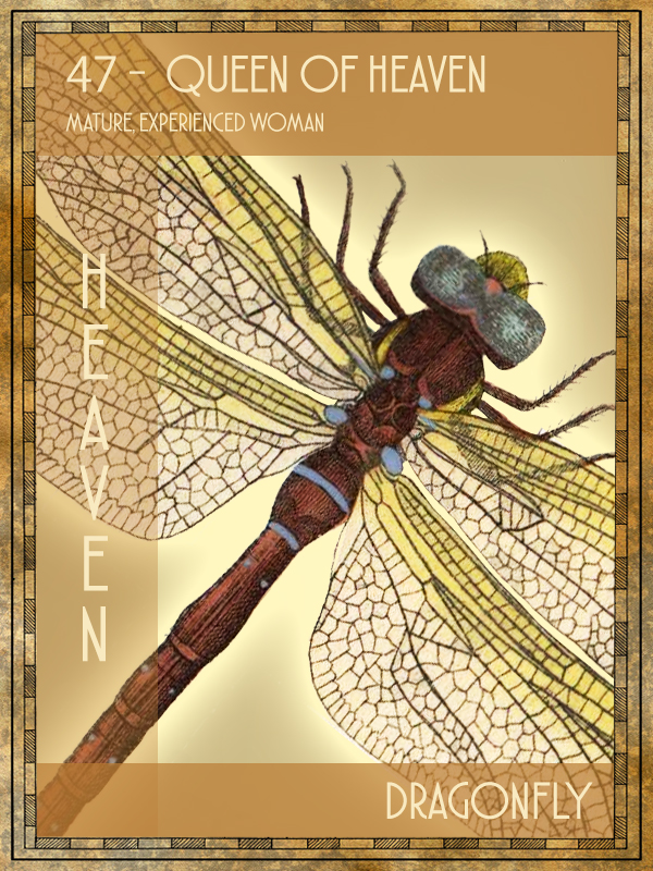 Animal Tarot Card:  Dragonfly