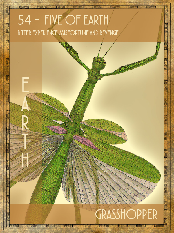 Animal Tarot Grasshopper