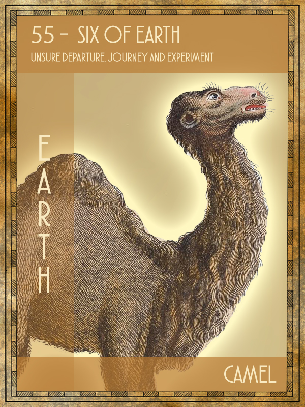 Animal Tarot camel