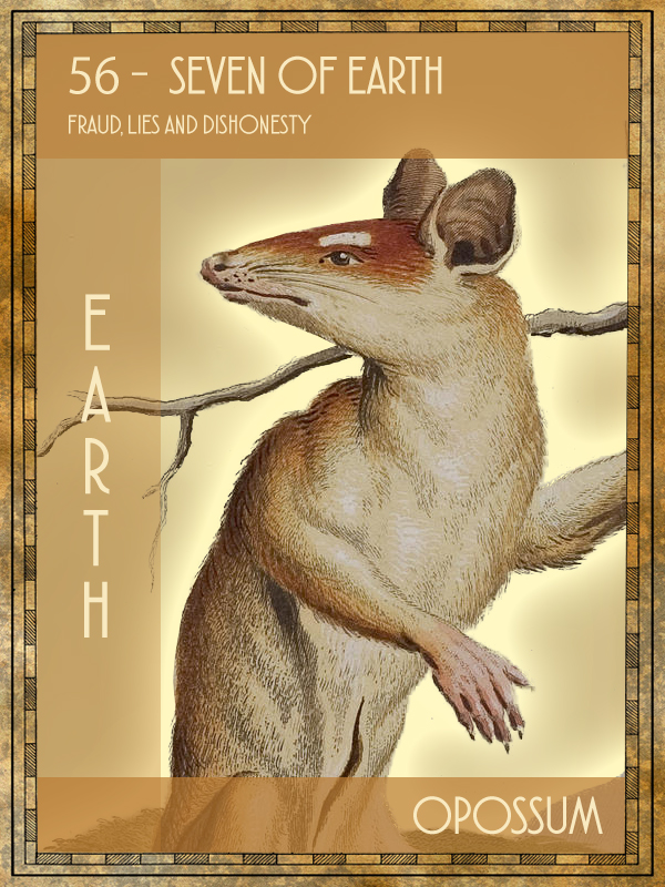 Animal Tarot Opossum