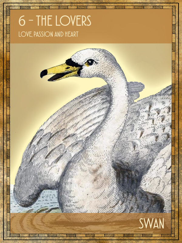 Animal Tarot Swan