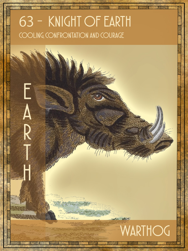 Animal Tarot Card:  Warthog
