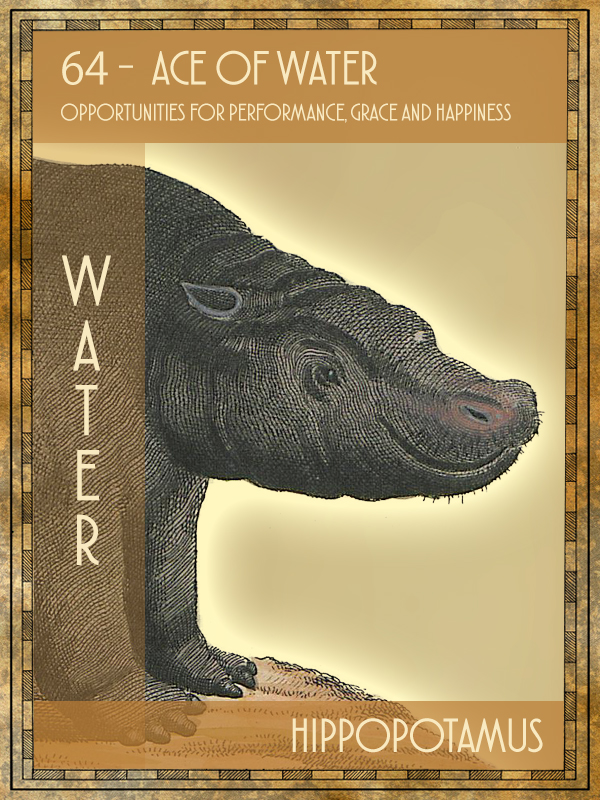 Animal Tarot Hippopotamus