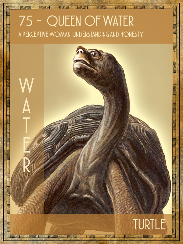 Animal Tarot Turtle