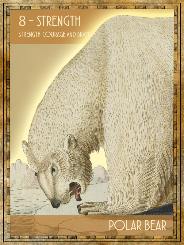 Animal Tarot Card:  Eisbär