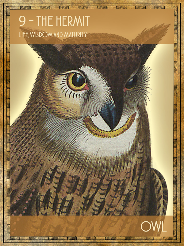 Animal Tarot Owl