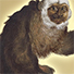 Animal Tarot White-faced saki