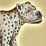 Animal Tarot Leopard