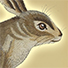 Animal Tarot Rabbit