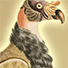 Animal Tarot Vulture