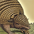 Animal Tarot Armadillo